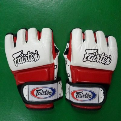 Fairtex pro MMA gloves