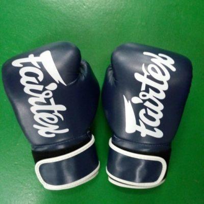 Fairfax blue Muay Thai Gloves