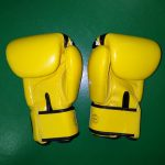 fairtex gloves yellow Nations