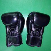fairtex-gloves-black