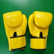 fairtex-muay-thai-gloves-yellow-back