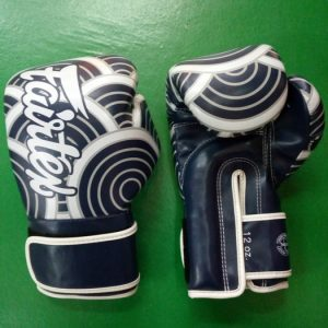 FAIRTEX BOXING GLOVES JAPANESE ART BLUE COLOR BGV14