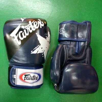 Fairtex Boxing Gloves Nations style Blue BGV1